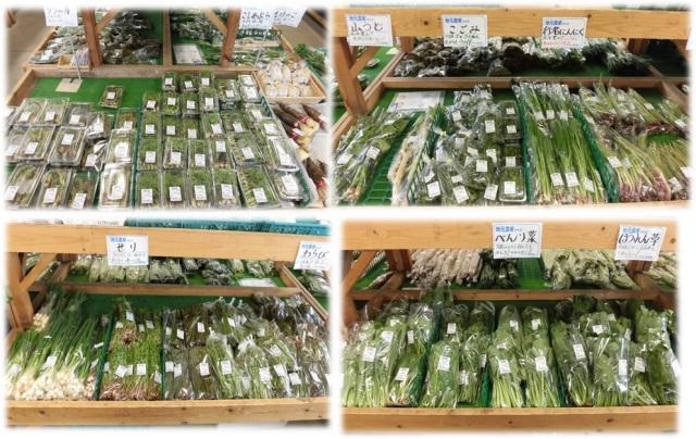山菜,こごみ,タラの芽,わらび,せり,里ふき,山うど