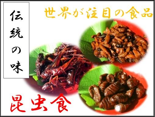 昆虫食,バナー,千曲市,産直市場ヤマサン